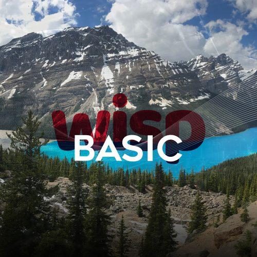 Wisp-basic-1000x1000